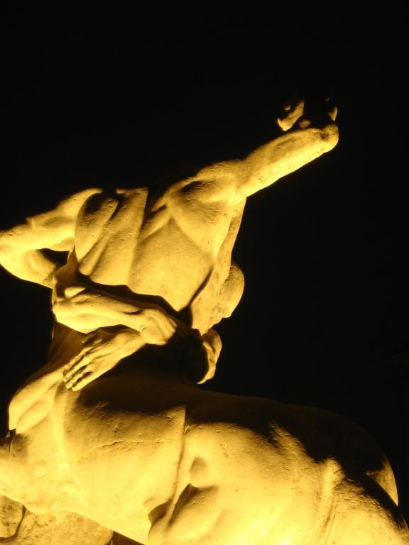 Plecy centaura